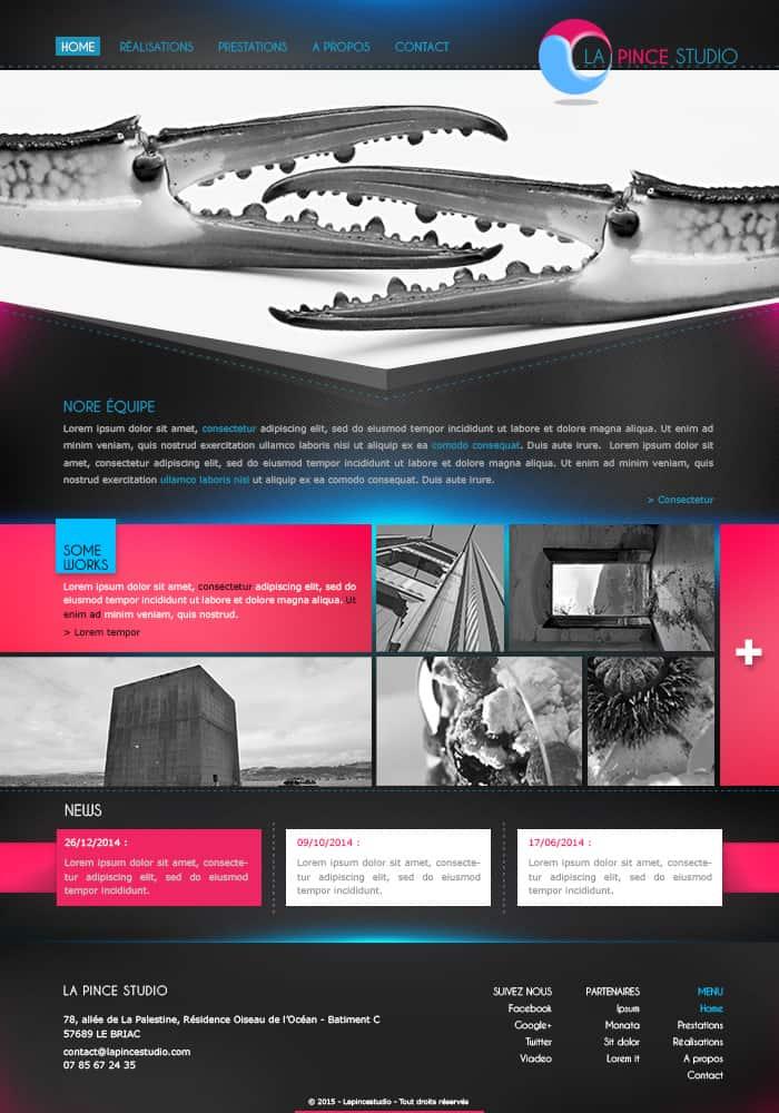 Template site web (webdesign) - La pince studio